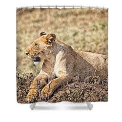 Lioness Relaxing Shower Curtain