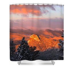 Lion's Head II Shower Curtain