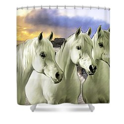 Lipizzans Shower Curtain by Tom Schmidt