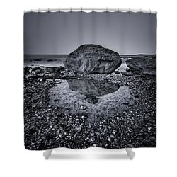 Liquid State Shower Curtain by Evelina Kremsdorf