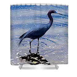 Shower Curtain featuring the photograph Lit'l Blue by Elizabeth Winter