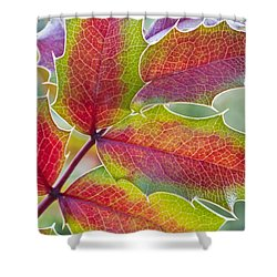 Little Bit Of Autumn Shower Curtain