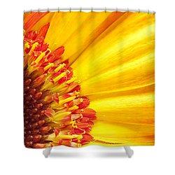 Little Bit Of Sunshine Shower Curtain by Eunice Gibb
