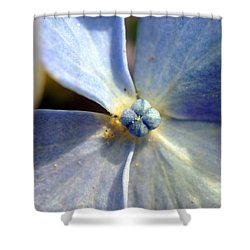 Little Blue Flower Shower Curtain by Kay Lovingood
