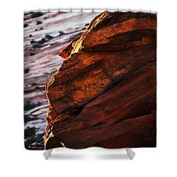 Little Brother Shower Curtain by Skip Hunt