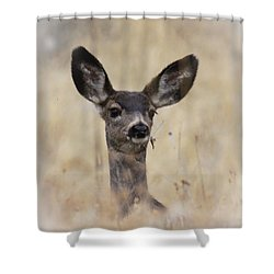 Shower Curtain featuring the photograph Little Fawn by Steve McKinzie