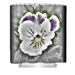 Little Pansy Shower Curtain by Karen Harrison