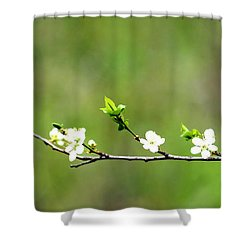 Shower Curtain featuring the photograph Little Petals by Michelle Joseph-Long