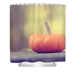 Little Pumpkin Shower Curtain by Amy Tyler