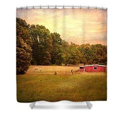 Little Red Barn Shower Curtain by Jai Johnson