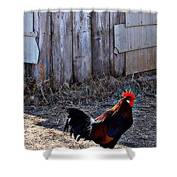 Little Red Rooster Shower Curtain