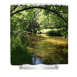 Little South Arch Shower Curtain