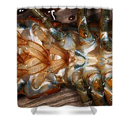 Lobster Female Sex Organs Shower Curtain by Ted Kinsman