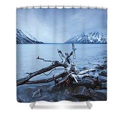 Log Along The Shores Of Kathleen Lake Shower Curtain by Robert Postma