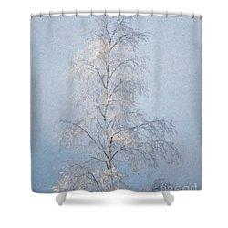 Lone And Slender Shower Curtain by Ari Salmela