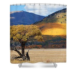 Shower Curtain featuring the photograph Lone Tree by Jim Garrison