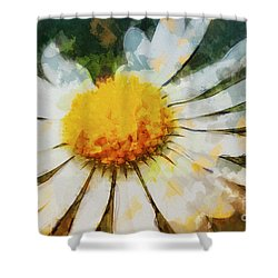Lonely Daisy Shower Curtain