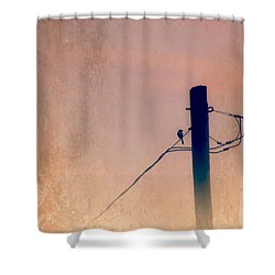 Lonely Soldier Shower Curtain by Susan Bordelon