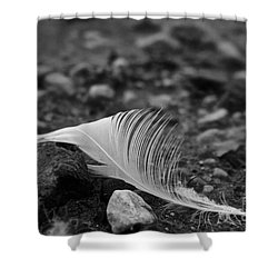 Loner Shower Curtain by Susan Herber