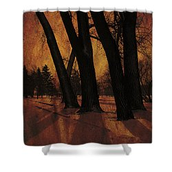 Long Shadows Shower Curtain by Alyce Taylor