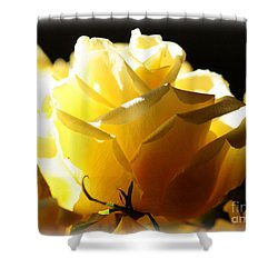 Look On The Bright Side  Shower Curtain by Carol Groenen