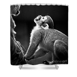 Look Up Shower Curtain by Darcy Michaelchuk