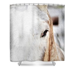 Looking Into Her Soul Shower Curtain by Darren Fisher
