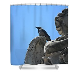 Shower Curtain featuring the photograph Lookout by Laurel Best