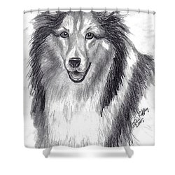 Shower Curtain featuring the drawing Looks Like Lassie by Julie Brugh Riffey