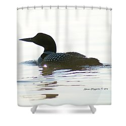 Loon 3 Shower Curtain