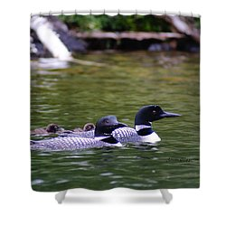 Loons With Twins 4 Shower Curtain