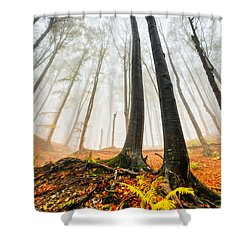 Lords Of The Forest Shower Curtain by Evgeni Dinev