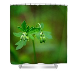 Shower Curtain featuring the photograph Lost But Not Forgotten by Vicki Pelham