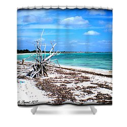 Shower Curtain featuring the photograph Lost Paradise The Sequel 2 by Danielle  Parent