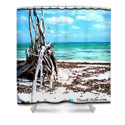 Shower Curtain featuring the photograph Lost Paradise The Sequel 3 by Danielle  Parent