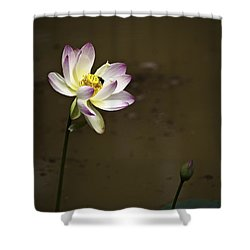 Lotus And Friend Shower Curtain by Rob Travis