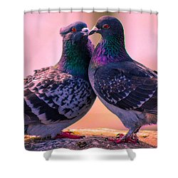 Love At First Site Shower Curtain