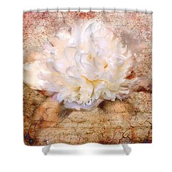 Love Letter IIi Shower Curtain by Jai Johnson