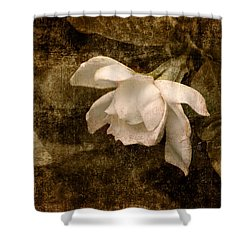 Love Letter Ix Cape Jasmine Gardenia Shower Curtain by Jai Johnson
