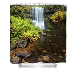Lower South Falls Shower Curtain by Adam Jewell