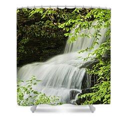 Loyalsock Waterfall Shower Curtain