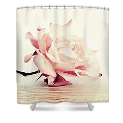Lucid Shower Curtain