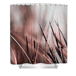 Luminis - S03a - Brown Shower Curtain by Variance Collections