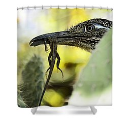 Lunch With A Roadrunner  Shower Curtain by Saija  Lehtonen