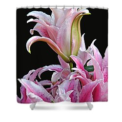 Luscious Lilies Shower Curtain
