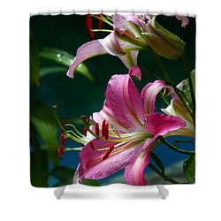 Lushes Fragrant Lilies Shower Curtain