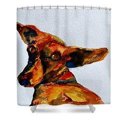 Macey Shower Curtain