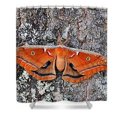 Madam Moth Shower Curtain by Al Powell Photography USA