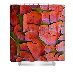 Madrone Shower Curtain