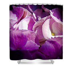 Magenta Floral Shower Curtain by David Patterson